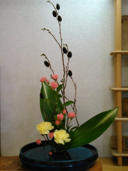 KIMG0041 花