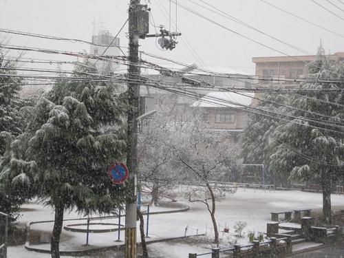 雪が降る・・