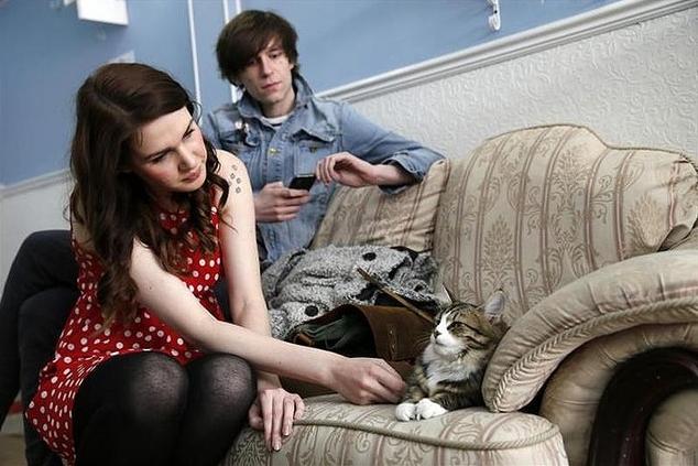 ロンドンにも「猫カフェ」オープン、6月まで予約満杯の人気ぶり