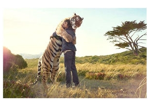 トラを抱きしめる喜びを知りたがる人間のために、神はネコをお創りになった。