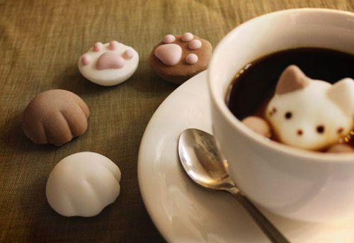 見つめられてしまう「CafeCat」