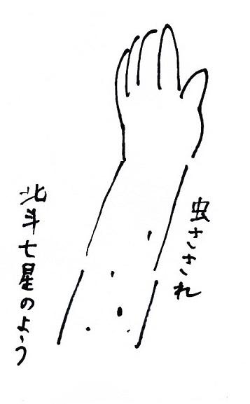 スキャン_20140617 (7)