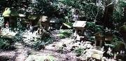 佐助稲荷神社5