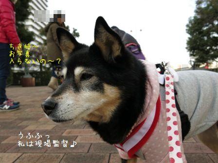 幼馴染+α散歩②