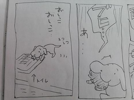 buhi6.jpg