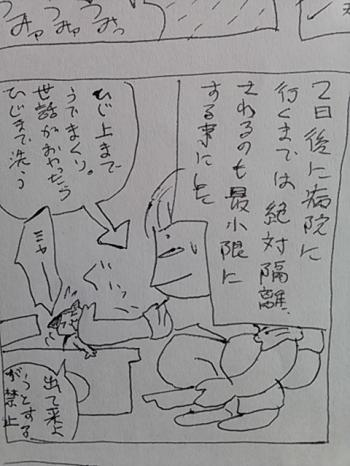 yuki16.jpg