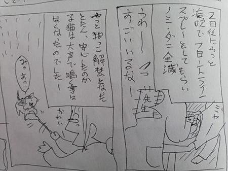 yuki17.jpg