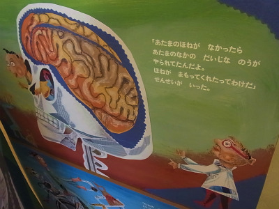 syukusyo-RIMG0228_20140831185515d93.jpg