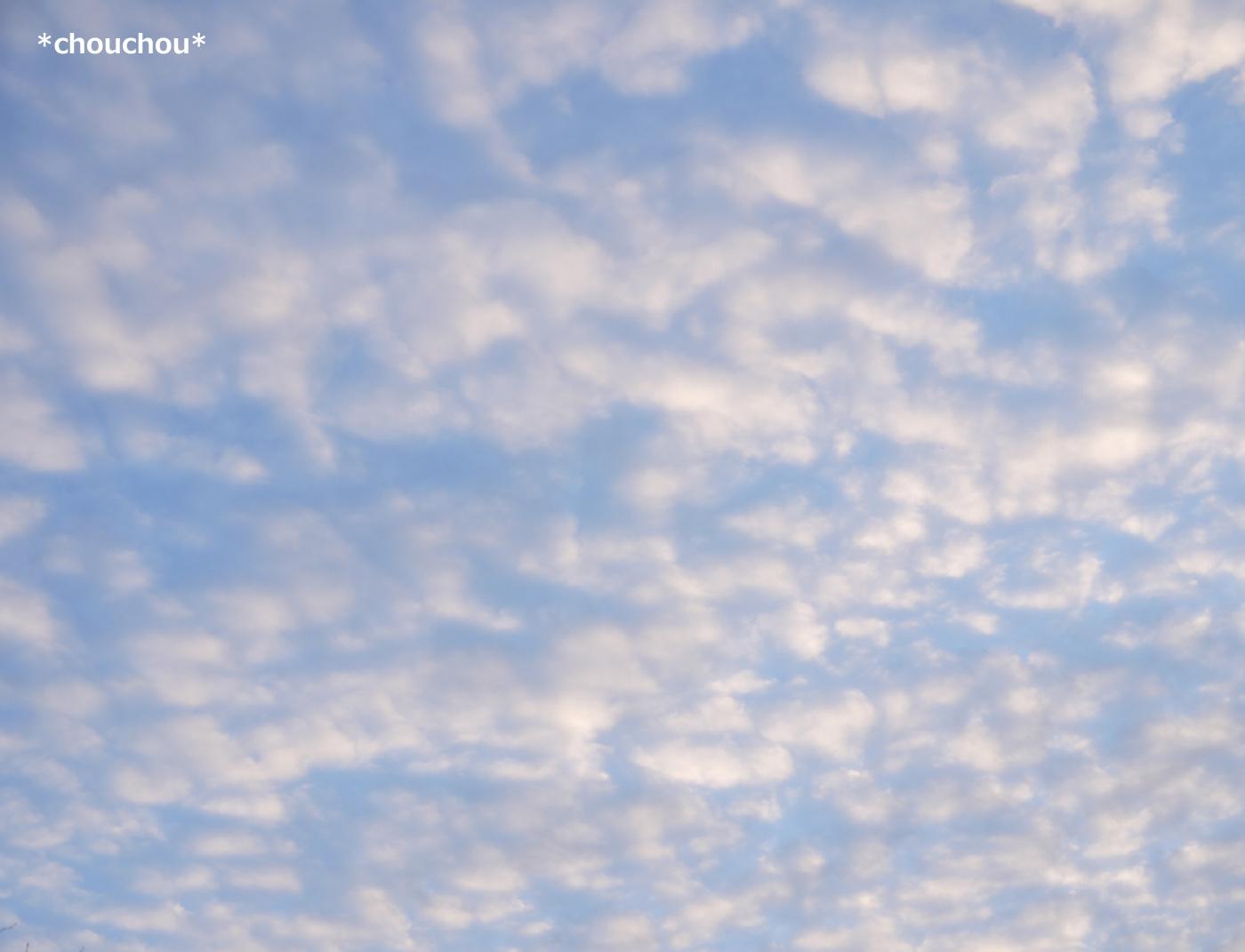 霧島 ほわほわ雲