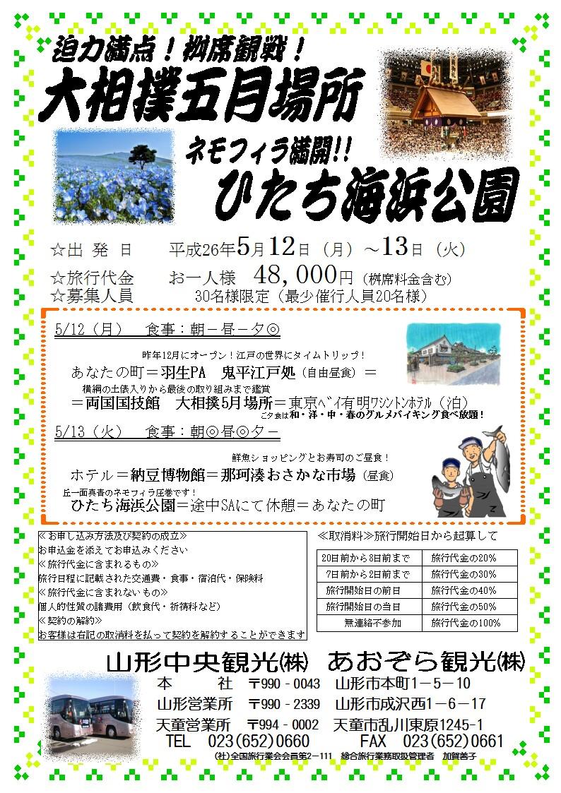 大相撲20140512