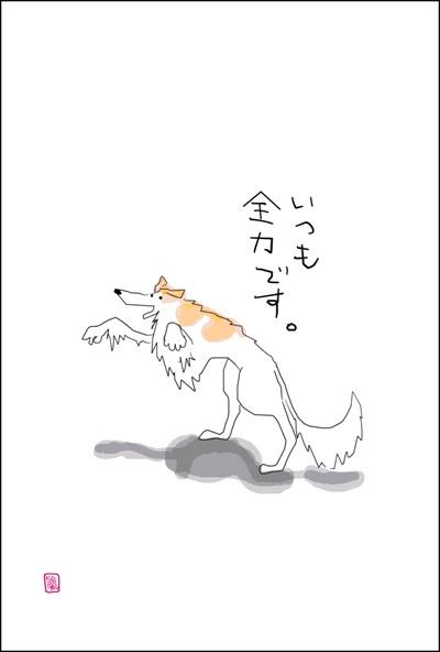 uchino-wanko-01.jpg