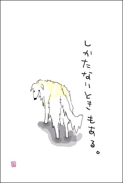 uchino-wanko-02.jpg