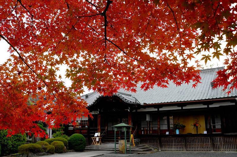 2014Blog5233.jpg