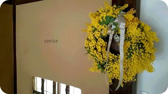 mimosa20143.jpg