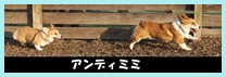 0313201402.jpg