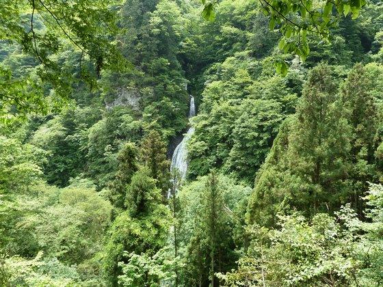 展望台から眺める丸神の滝