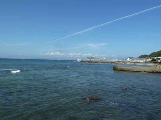 金谷漁港から眺める金谷港