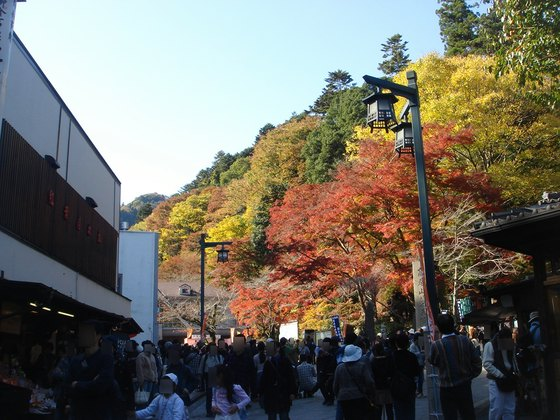 2009秋高尾山