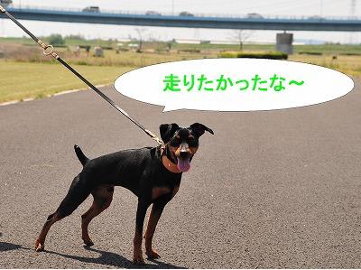 s-木曽三川1404193
