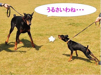 s-木曽三川1404194