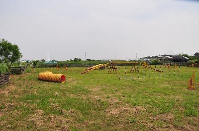 s-アジ1 20140502