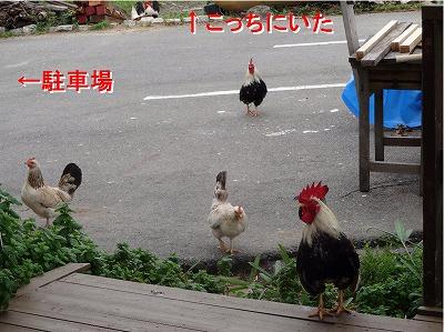 s-小空20140608 コピー1