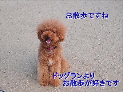 s-なぎちゃん20140615