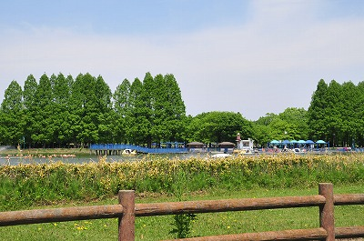 s-20140050406.jpg