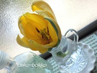 チューリップ 花瓶 201404
