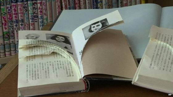 Anne Frank's Diary vandalised in Japan libraries BBC