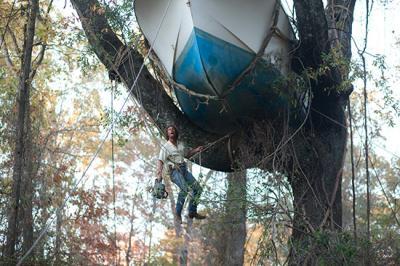 『MUD‐マッド‐』 木の上のボート。マッドと少年たちはこのボートを川へと戻す。