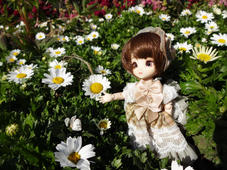 お花とエルダーちゃん