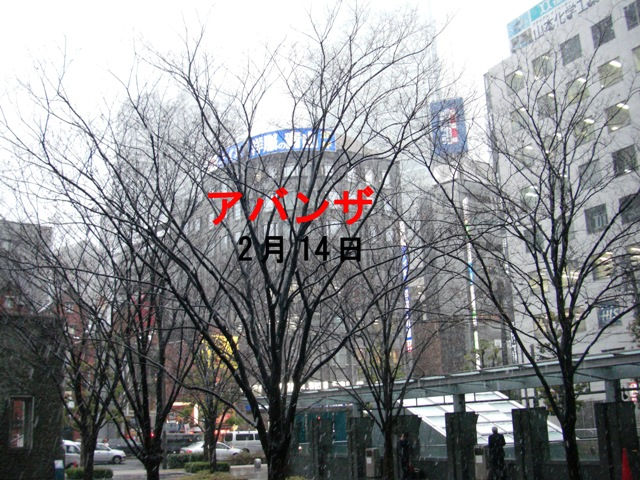 アバンザ木