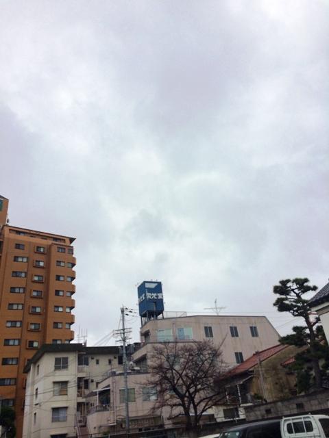 IMG_1494.jpg