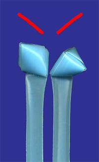 三角玉2種