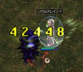 0529koku.jpg