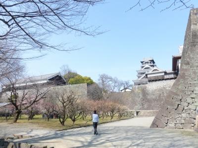 熊本城② 2014 2・23