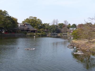 水前寺公園③ 2014 2・23