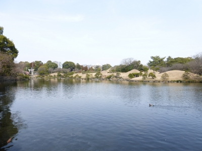 水前寺公園④ 2014 2・23