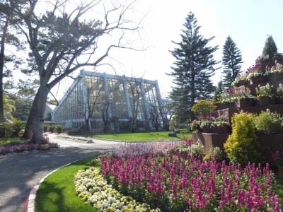 青島亜熱帯植物園 2014 3・5