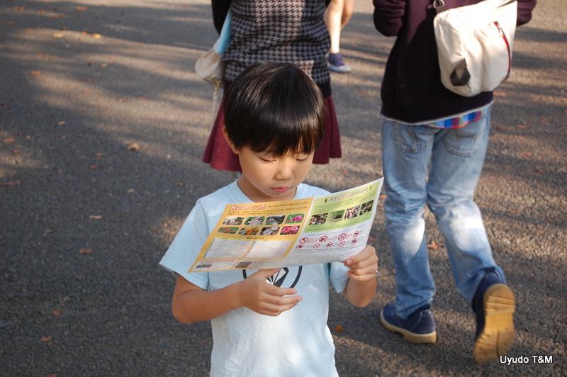 20141025 Gyoen (15)