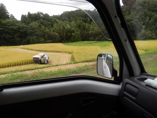2014.8.23 矢那の稲刈り 015
