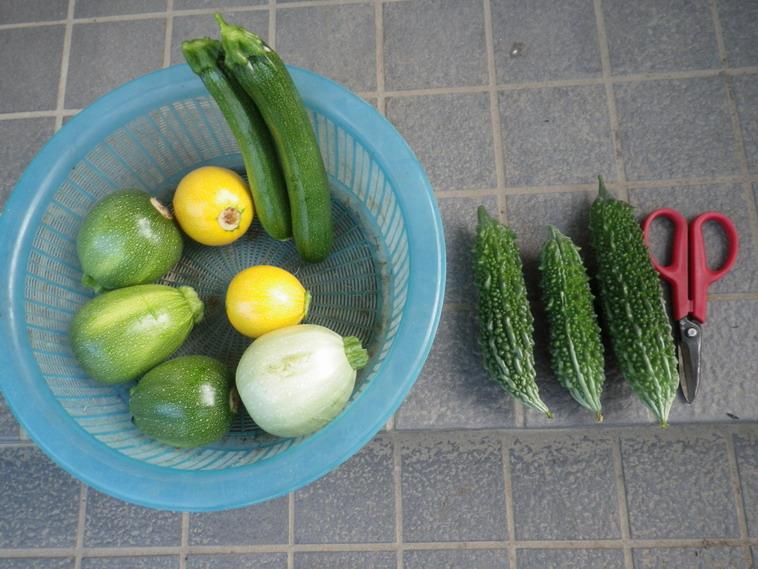 収穫2_14_07_02