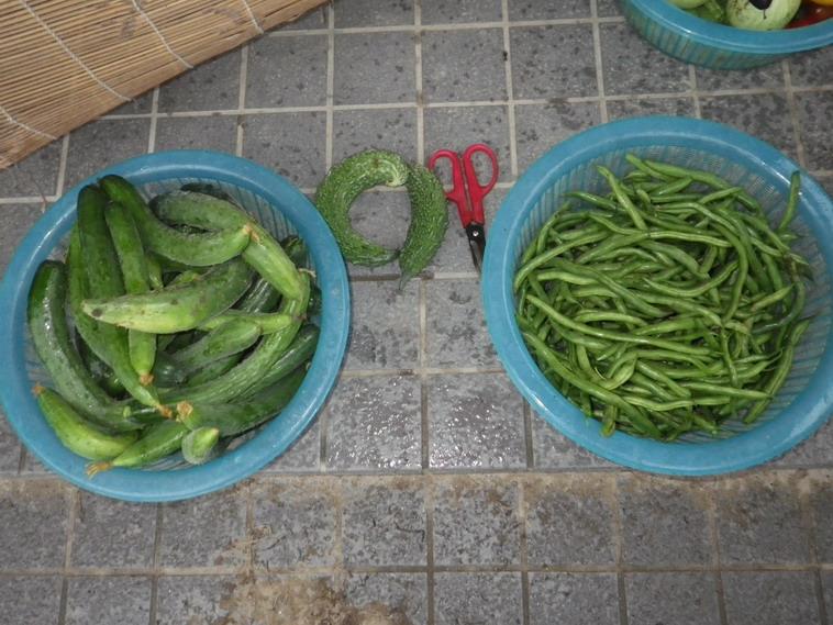 収穫2_14_07_10