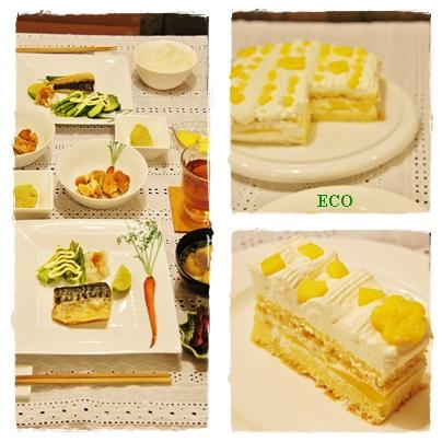 eco35.jpg