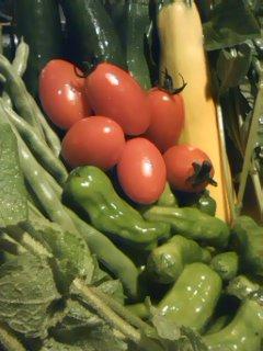 軽井沢の無農薬野菜