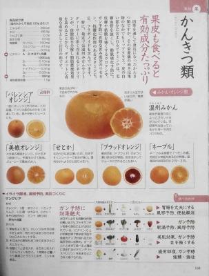 かんきつ類(レモンを含む)