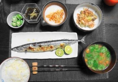 初・秋刀魚