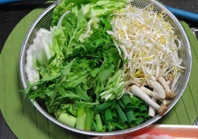 野菜一式:白菜・水菜・ネギ・もやし・えのき