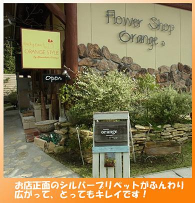 141007-orange1.jpg